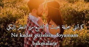 صور كلمات تركية رومانسية , عبارات حب تركية
