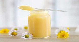 صور فوائد غذاء ملكات النحل , ماهى مزايا غذاء ملكات النحل