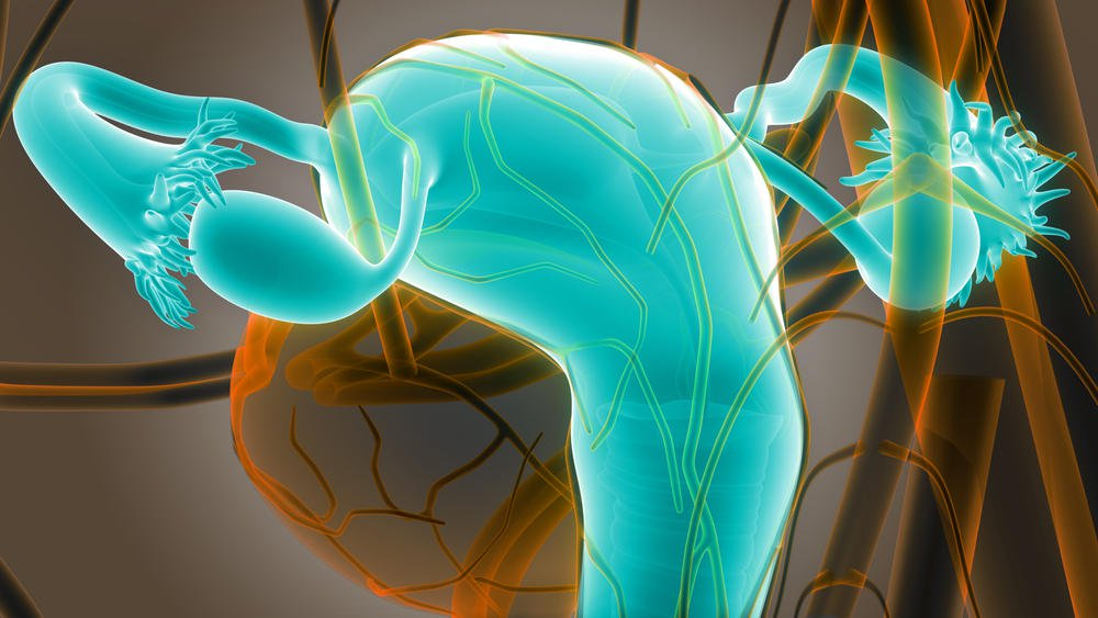 صورة علامات ثبوت الاجنه بعد الترجيع , اعراض ثبات الجنين بعد الترجيع
