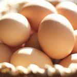 ماذا يعني البيض في المنام , تفسير رؤيا البيض بالمنام