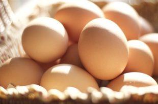 صور ماذا يعني البيض في المنام , تفسير رؤيا البيض بالمنام