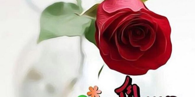 صورة صور مساء الورد , اجمل الامسيات المعطرة 12866 11 660x330