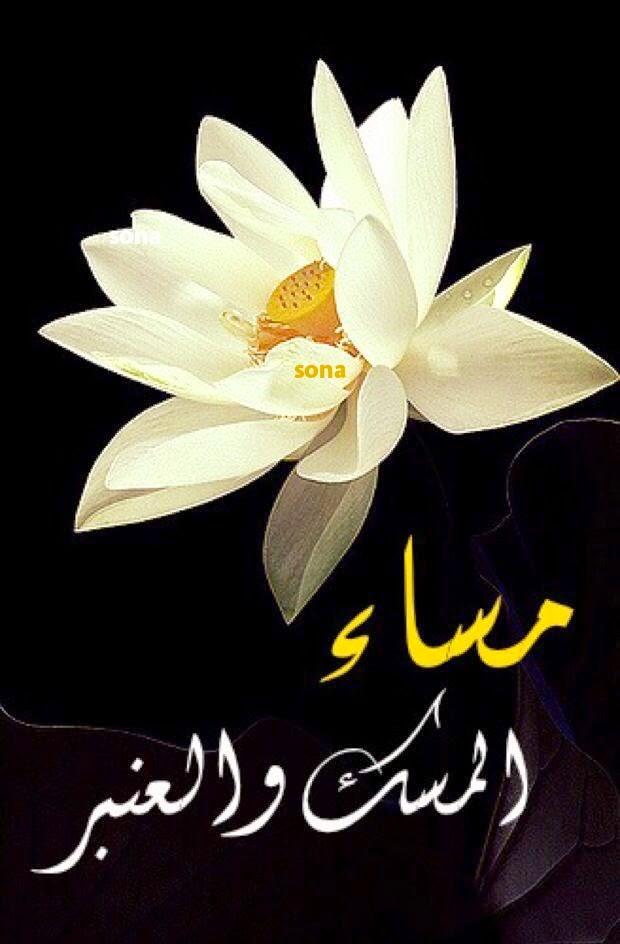 صورة صور مساء الورد , اجمل الامسيات المعطرة 12866 4