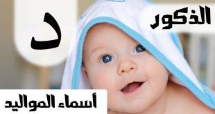 صور ولد بحرف د , اسماء صبيان تبدا بحرف الدال ومعانيها