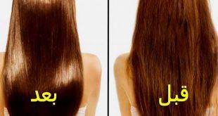 صورة فوائد زيت اركان المغربي للشعر , افضل زيت يطيل ويعذي الشعر