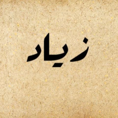 صورة معنى اسم زياد , العطاء الزائد بكل ما تعنيه الكلمة