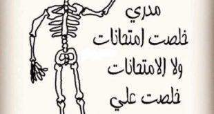 صورة صور عن الامتحانات , خليفات معبرة عما نشعر به