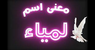 صورة مامعنى اسم لامية , اسم كله رقه وحنيه واحتواء