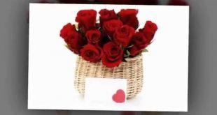 صورة وردة عيد الحب , فرح قلب من تحبه بوردة امل