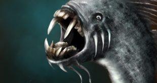 صورة الوحش في المنام , تفسير رؤيه الوحش قد يكون خيرا
