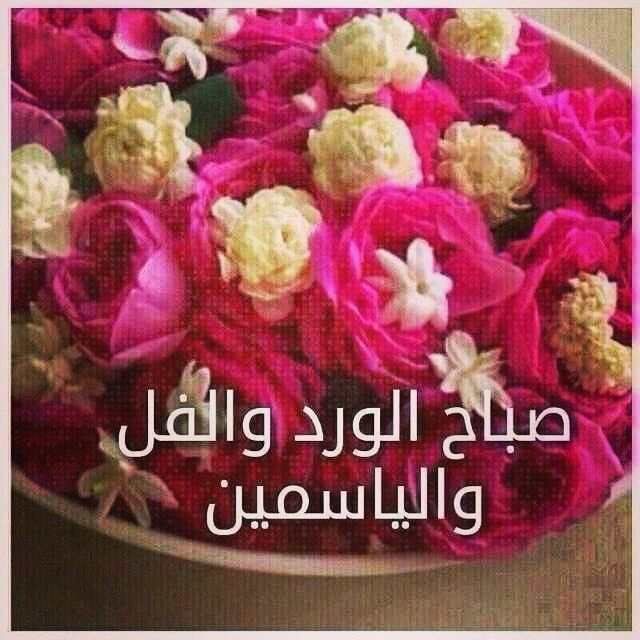 صورة صور صباح الورد والفل , ما اجمل الصباح مع نسمات فجر يوم جديد 13084 1