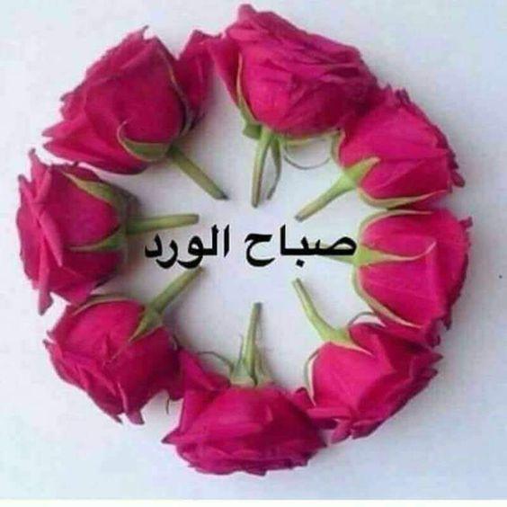 صورة صور صباح الورد والفل , ما اجمل الصباح مع نسمات فجر يوم جديد 13084 5