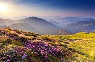 صورة اجمل صور الطبيعه , جمال الطبيعه هيفتح نفسك علي الحياة