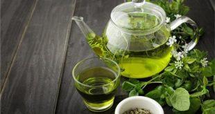 صورة ضرر الشاى الاخضر , ما لم تعرفه عن الشاى الاخضر