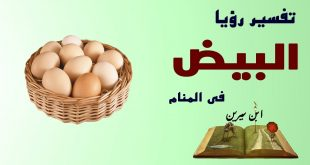 صورة تفسير رؤية البيض في المنام للمتزوجة , المتزوجة اذا حلمت بالبيض