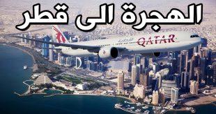 صورة العمل في قطر , سبب هجرة المصريين للعمل في قطر