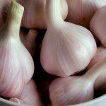 فوائد اكل الثوم , معالجة بعض الامراض بتناول اكل الثوم