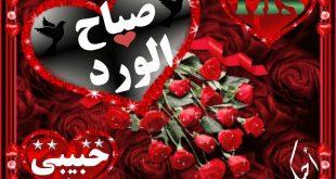 صورة صباح الورد حبيبي , احلي واجمل صباح لعيون حبيبي ♥️