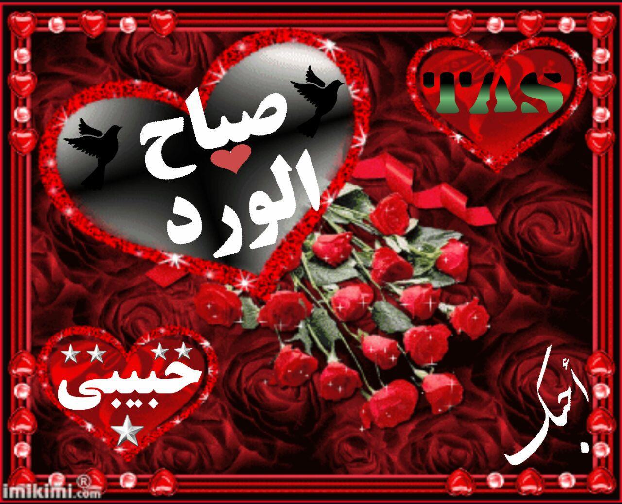 صباح الورد حبيبي احلي واجمل صباح لعيون حبيبي كلام نسوان