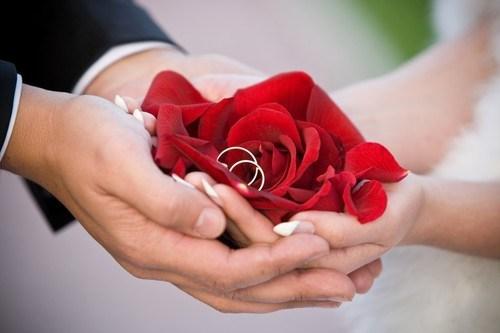 صورة صور ورد رومانسيه , اجمل صور الورود الجميلة جدا 👇 6553 6