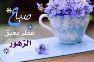 صورة رسالة صباح الخير , اجمل واروع صور صباحية جميلة