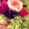 لكل زهره اسم تنادى به , اسماء الزهور والورود
