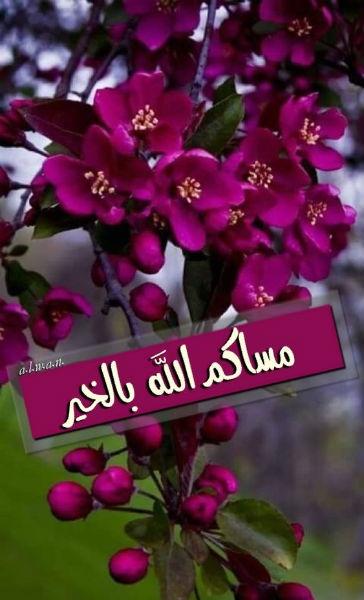 صورة كلمات معبرة حلو بها المساء , اجمل مسجات المساء 11962 29